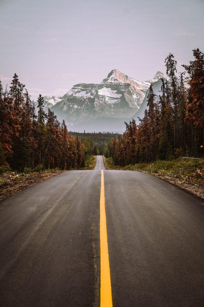 mountain, canada, jasper